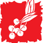 Holiday Punch (Non Alcoholic)